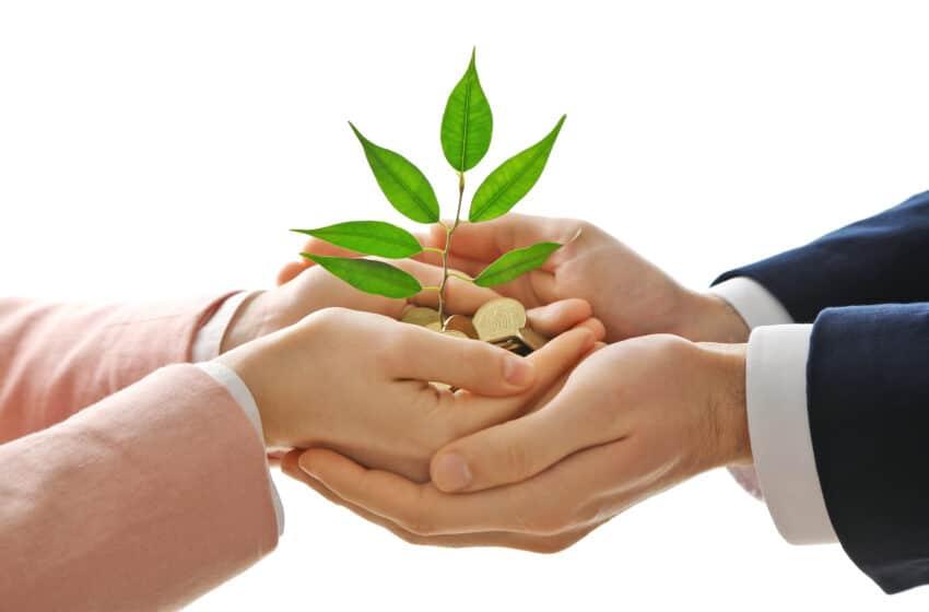 Optimizing Investor Interactions